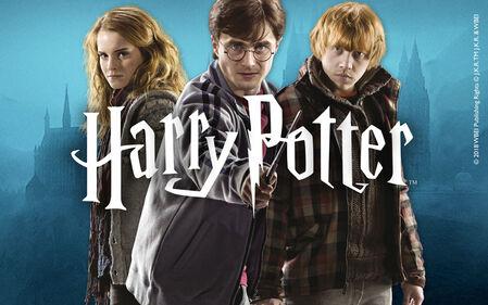 Vivi la magia di Hogwarts