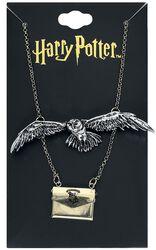 Hedwig und Brief