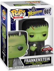 Frankenstein Vinyl Figure 607