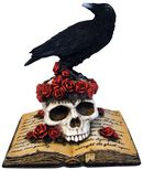 Heartaches Reflection - Crow on Skull