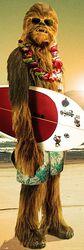 Chewbecca - Surfin'