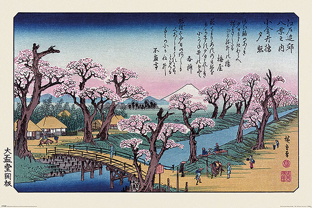 Mount Fuji Koganei Bridge