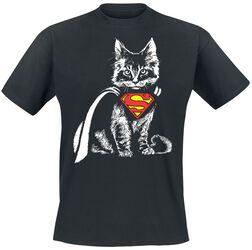 Cat Cape