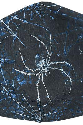 Spidrasica's Web