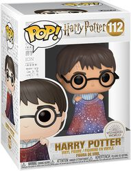 Harry Potter Vinyl Figure 112