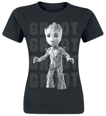 2 - Groot Photo