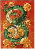 Shenron - Notebook