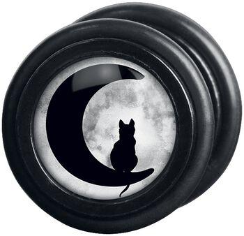 Moonlight Cat