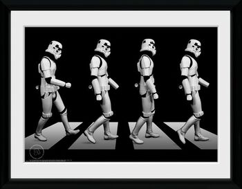 Stormtrooper Crossing