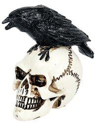 Raven Skull: Miniatur Schädel