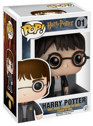 Harry Potter Vinyl Figure 01