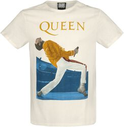 Amplified Collection - Freddie Mercury Triangle