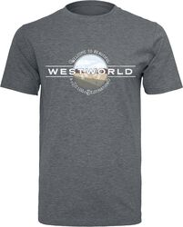 Welcome To Westworld
